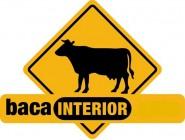 BACA INTERIOR