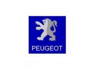 PEUGEOT 4008  (Desde 2012)