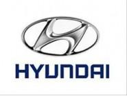 HYUNDAI  SANTA  (2010-2012)